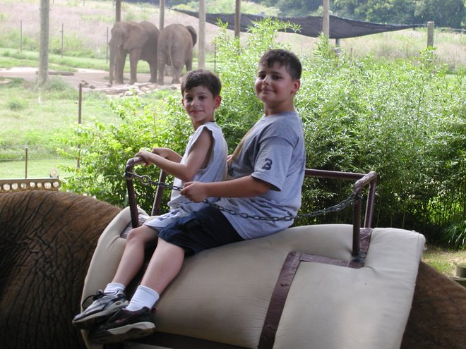 Aaron and Isaac on an elephant