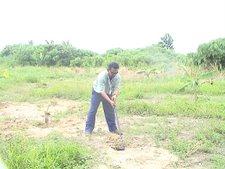 Aktiviti untuk menghidupkan amalan sedekah jariah yang berterusan melalui tanaman pokok herba