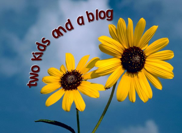 two kids and a blog