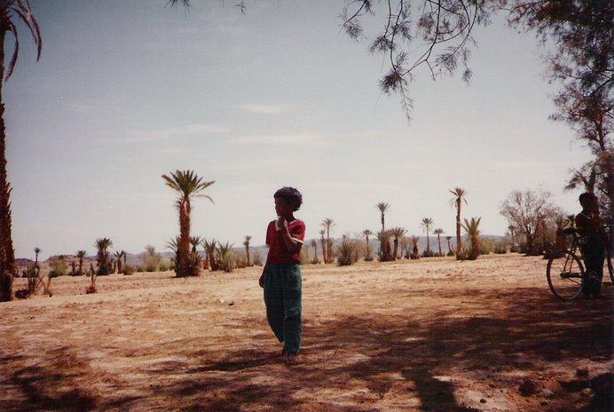 El Shajel o comienzo del Sahara es una rara mezcla de arena, piedras y vida en todos los sentidos.