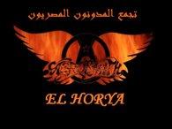 تجمع المدونون المصريون
