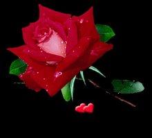 Nos hemos besado y ara ado el alma por fontana a un for Exterior no es la voz es clamor desde el alma