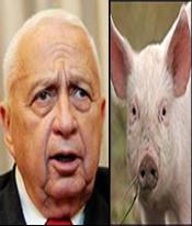 Former politicians