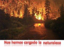 Nos hemos cargado la naturaleza