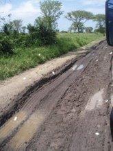 Bwindi Congo Road