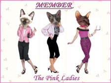 We our members of the Pink Ladys