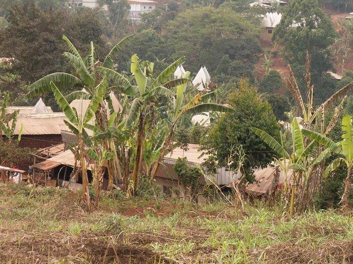 Les villages typiques