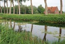 Spiegeling in het Kanaal Brugge-Sluis