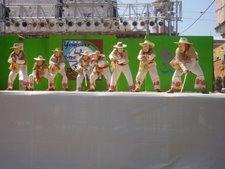 tradicionales bailables