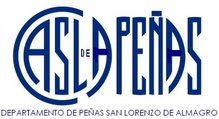 CASLA PEÑAS - website