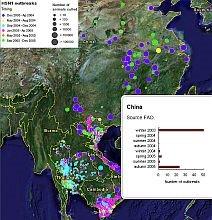 Avian Flu outbreak map