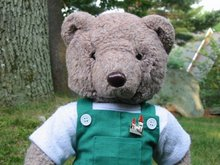 Brendan Bear