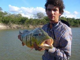 Pesca de pavón