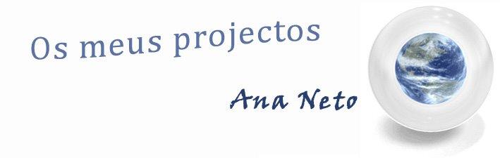 Os meus projectos - Ana Neto