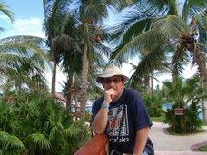 Bajo las palmeras, en espera de la musa...¡musa ven!