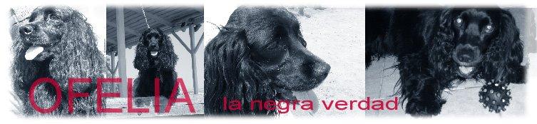 OFELIA: La NeGrA VeRdaD