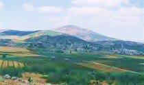 RAJO - BAYLAN (Reco راجو)