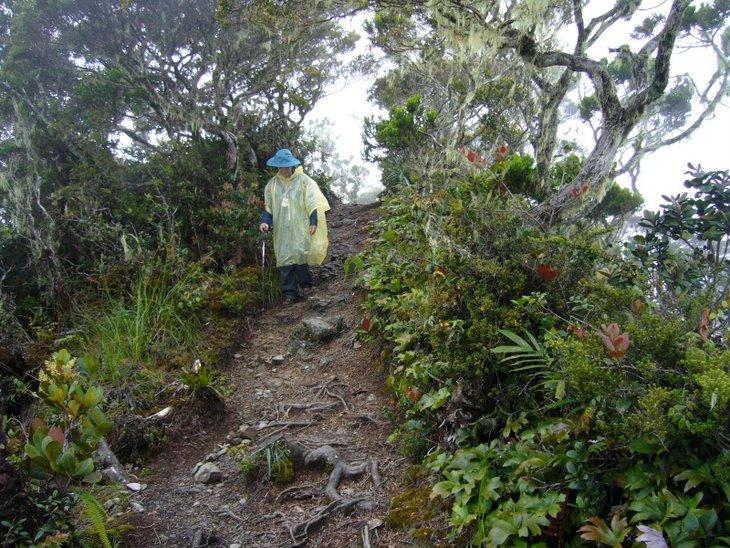 Mendaki Gunung Kinabalu