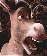 burro ♥
