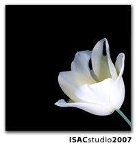 ISAC International