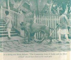 Haile Selassie's Pet Lion