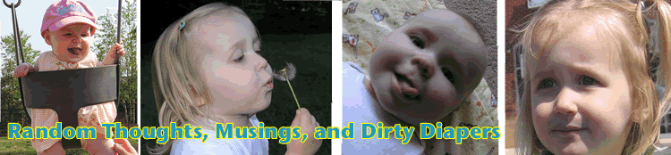 Random Thoughts, Musings, and Dirty Diapers