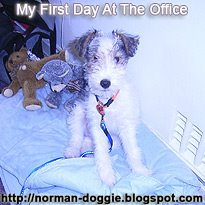 My First Day at the Office