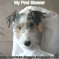 My First Shower
