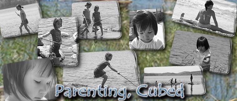 Parenting Cubed