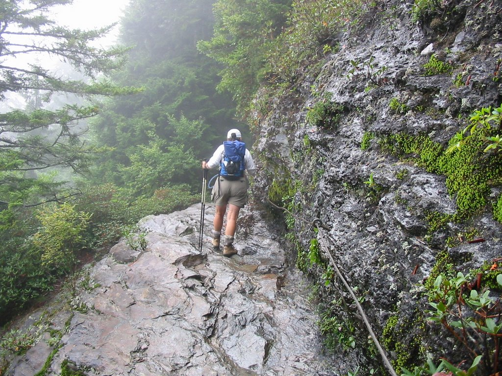 from the Tennessee Plateau: Mount LeConte...part 1, the trail.