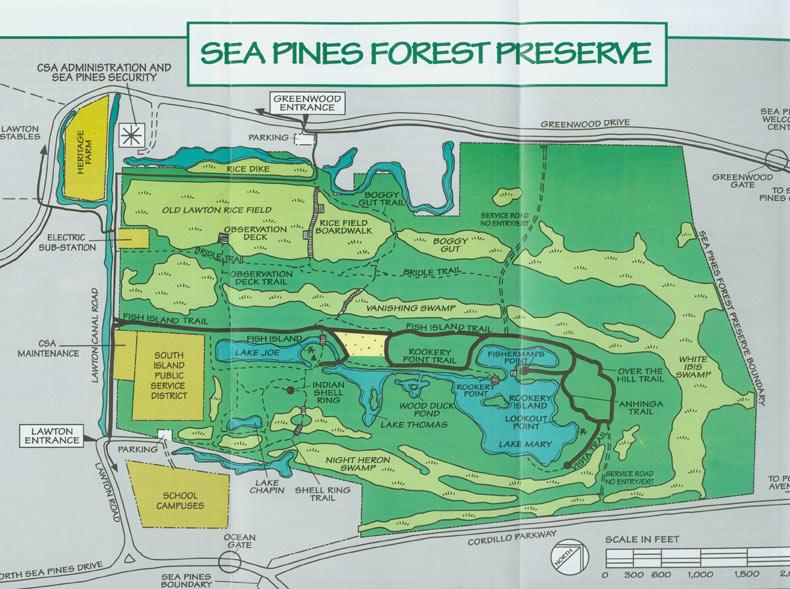 Sea Pines Wildlife Journal: Nature Walk 1 on hilton head resort map, hilton head neighborhood map, beaufort map, st. james plantation map, channelside district map,