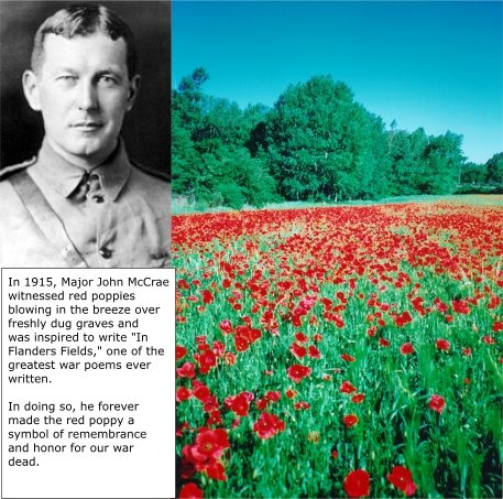 the despondency of war in john mccraes in flanders field Lt col john mccrae, md the in flanders fields museum presents first world war history from the west flanders region of europe its location, in the cloth hall of ypres, gives it particular weight.