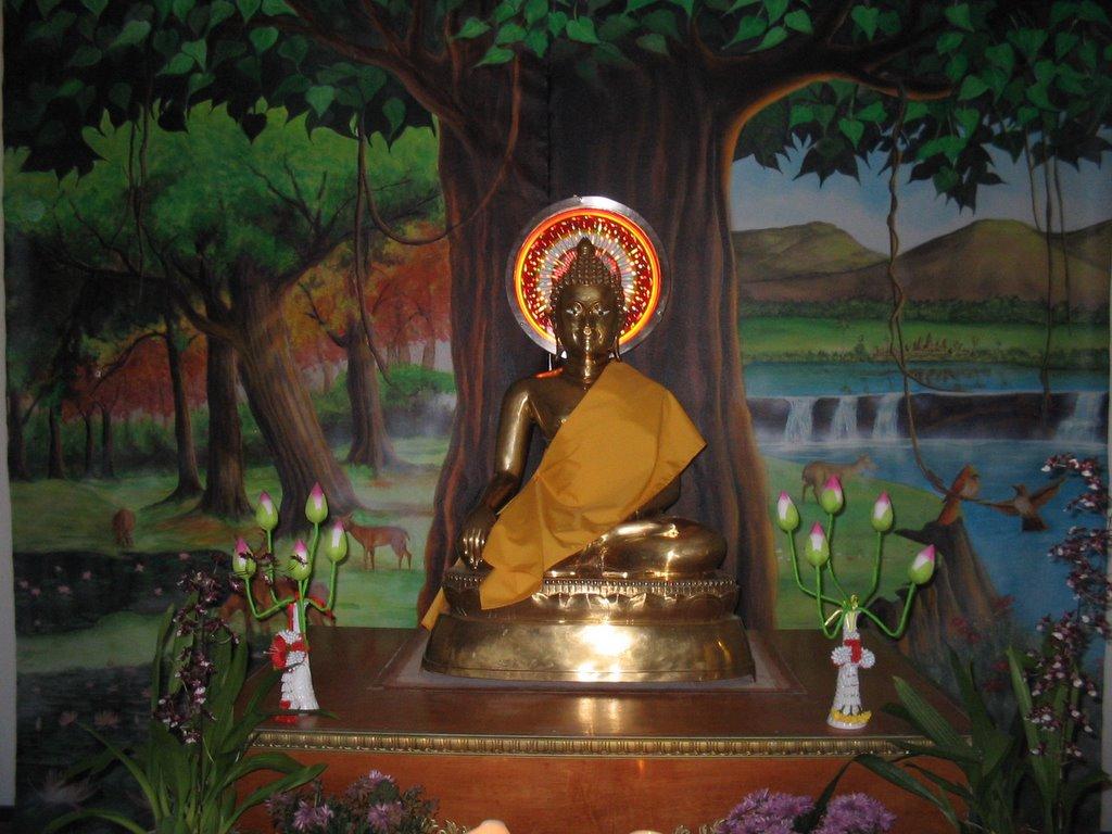 lord buddha education foundation - HD1024×768