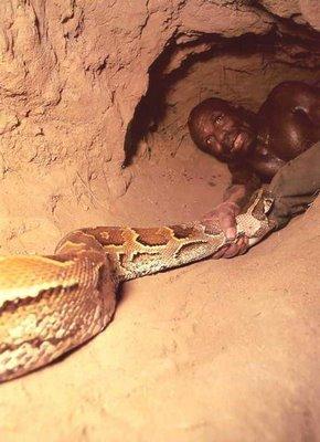 Cómo cazar  una serpiente