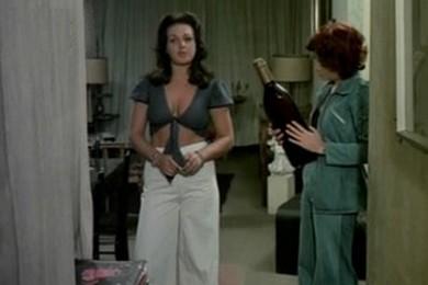 Karina objeto do prazer 1981