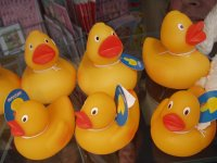 Blogger - Ducked