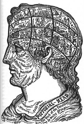 Pictorial Head