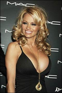 Can, too Pamela anderson boob feeling above told
