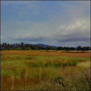 Etelä-Goaa