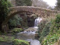 Jesmond Dene Waterfall