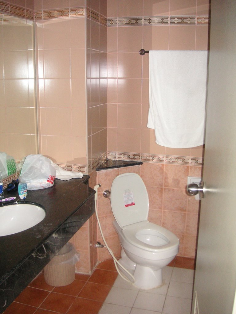 toilettes turques interdites mode d. Black Bedroom Furniture Sets. Home Design Ideas