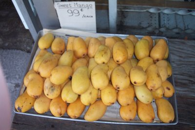 Sweet yellow mango at 99 cents each