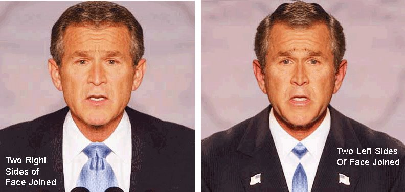 The Unknown Candidate: Why Bush Smirks