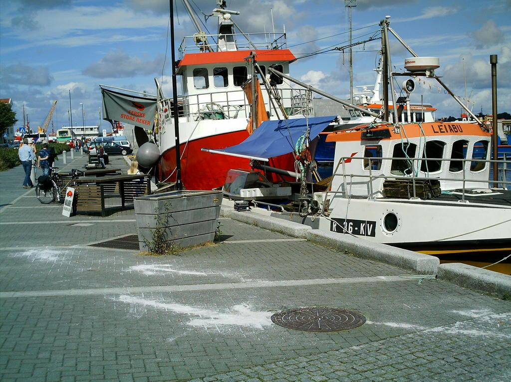 Reker Stavanger