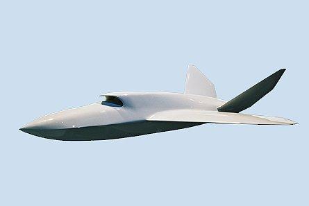 Die Luftfahrt Eads Und Dlr Erste Bilder Vom Ucav Barracuda