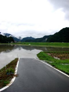 My flooded riverside vegetable garden, Shimane.