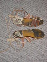 The Remains of the Shoes