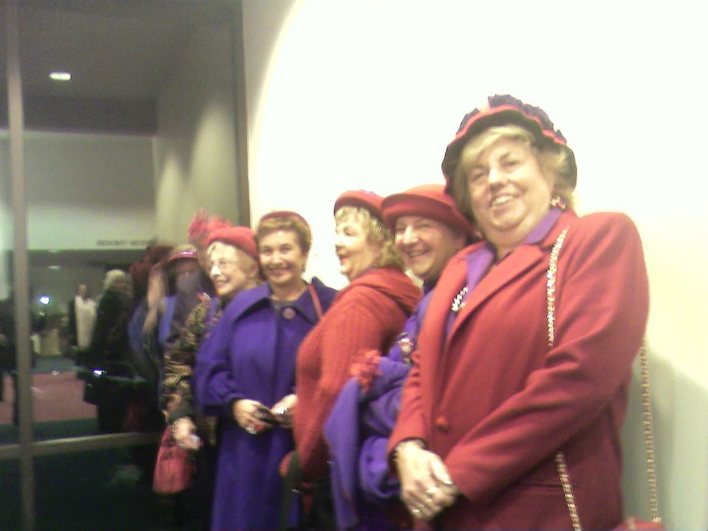 d76d8f32e66 were member of the Red Hat Society. As Wikipedia reports  The Red Hat  Society is not a sorority or a voluntary service club. There are no  initiations