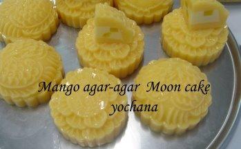 how to make agar agar mooncake