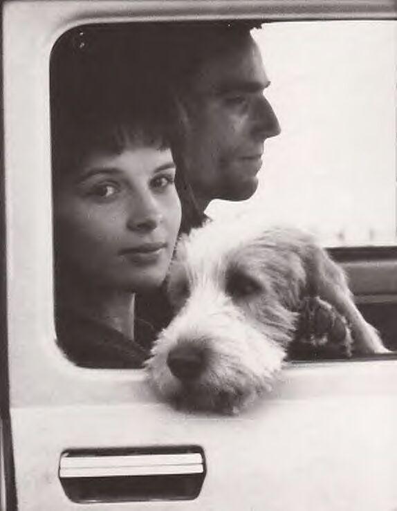 Death And Aging: Karenin's Smile, Milan Kundera